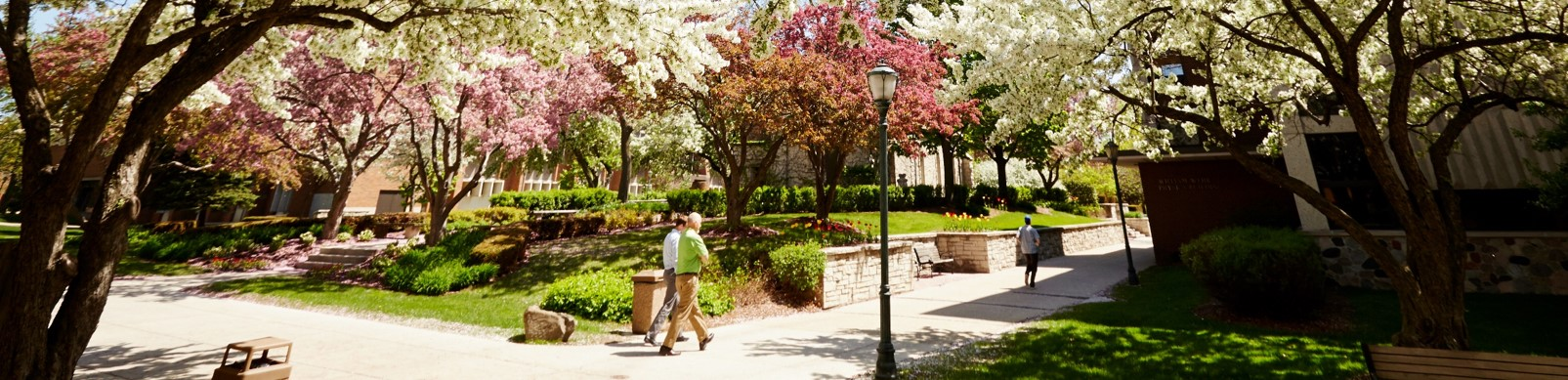 Marquette campus in the spring.